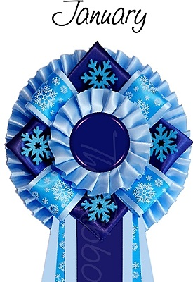 Ribbon of the month - January
